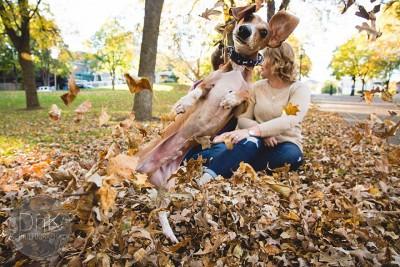 Qeni që zbukuroi fotot e dasmës….pothuajse!