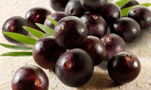 acai-berries_1