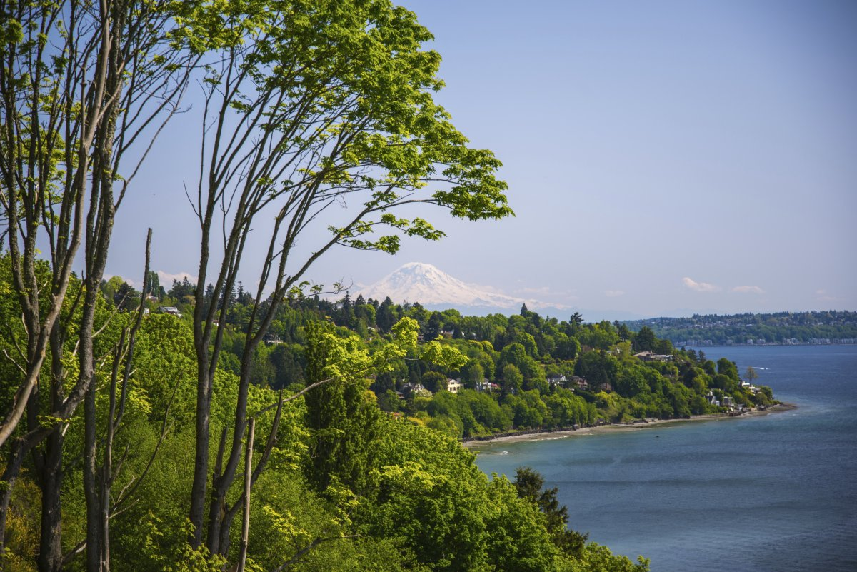 discovery-park-seattle-on-a-clear-day-you-can-see-well-past-seattle-and-gaze-upon-mount-rainier-the-tallest-peak-in-the-state-of-washington