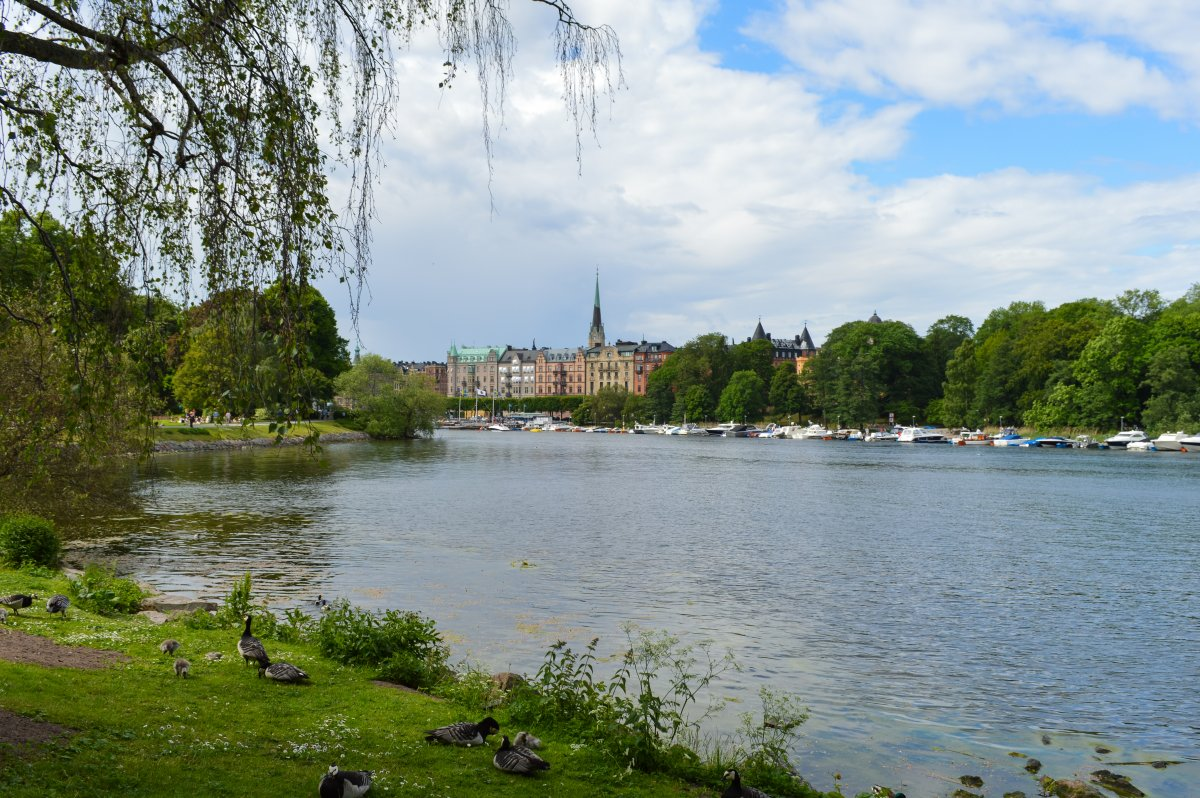 djugarden-stockholm-one-of-stockholms-most-beautiful-parks-is-located-on-the-citys-waterfront