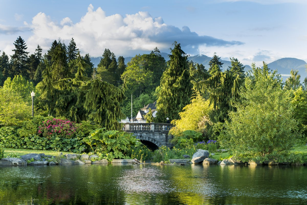 stanley-park-vancouver-british-columbia-unlike-most-city-parks-this-one-wasnt-created-by-a-landscape-architect-it-is-mostly-natural-forest-and-it-shows